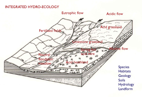 the different kinds of land drainage systems environmental sciences essay Environmental pollution is the undesired spread of toxic chemicals into the aquatic and terrestrial habitats of the world there are many different types of pollution, usually named for the location that has become polluted for example, if oil is dumped into a local creek, it is said to be an.